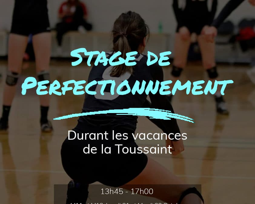 Stage de perfectionnement – Octobre 2019